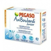 Axiboulardi Junior Pegaso 14 envelopes