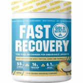 FAST RECOVERY PIÑA COLADA - 1 KG