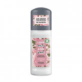 Desodorante manteca de muru muru & rosa Pampering Love Beauty & Planet 50ml
