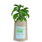 Kit huerto Stevia Garden Pocket
