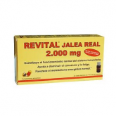 Revital Jalea Real PharmaOct, 20 Viales
