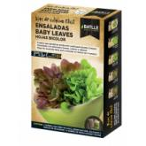 Kit salada baby leaves Folhas Bicolor