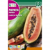 Semillas de Papaya Carica papaya